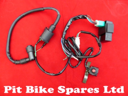 Complete Wiring Loom For Kick Start Pit Bike