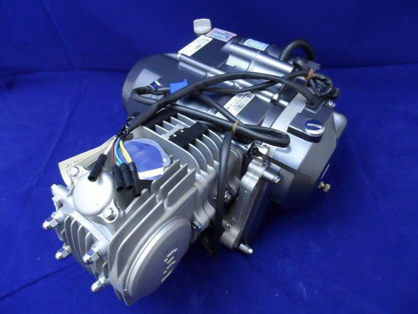 Lifan 125cc Big Valve Semi Auto E Start Pit Bike Engine B/S E/O